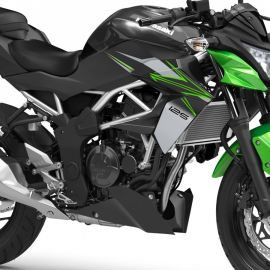 Kawasaki_Z125_Ninja125_2022_08